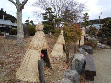 冬ぼたん園.jpg