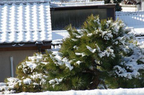 雪晴天のち雨−1.jpg